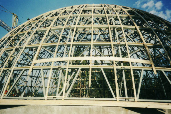 Timber Construction Greatpark Synagogue 1