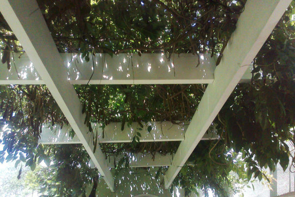 Timber Construction Pergola 11