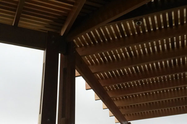 Timber Construction Pergola 6