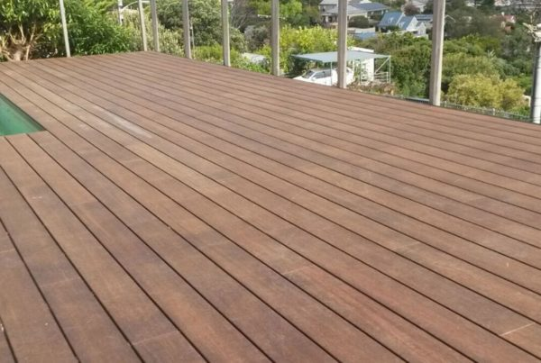 bamboo decking feature